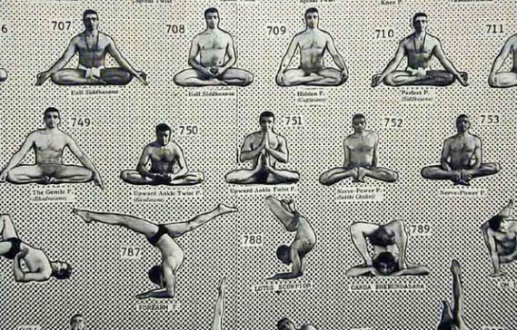 dhar e1422459776463 There Is No Need to Be Nervous about Dharma Yoga